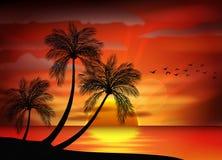 Photo of sunset on sea Stock Photo