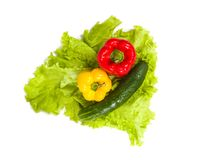 Healthy vegetables on salad Stock Photo