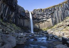Iconic Svartifoss waterfall Iceland Royalty Free Stock Images