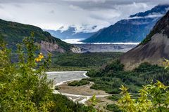 Nature view across riverbed in Denali National Park in Alaska Un. Photo taken in Denali National Park Alaska, United States of America. Denali National Park is stock photos