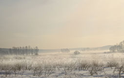 Thaw. Photo taken on a foggy day in the vicinity of the city of Minsk, Belarus Royalty Free Stock Photography