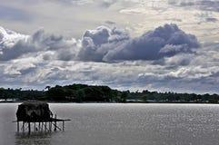 beautiful nature & landscape at north 24 pargana west bengal