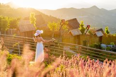 The figure of a woman in a long white dress at sunset. Photo taken in Panzhihua Flower Dance World Scenic Area, China. Beautiful women look at the mountains and stock image