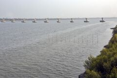Aerial view of matla river canning west bengal india