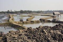 Rural landscape of bengal