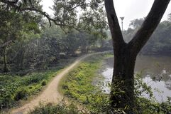 Rural landscape near hooghly west bengal