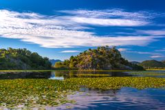 Rocky Island on Skadar Lake surrounded by water lilies. Monteneg Stock Photography