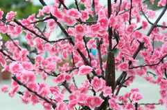 Some artificial fake cherry blossom flowers. A photo taken on some artificial fake cherry blossom flowers on the branches stock photo