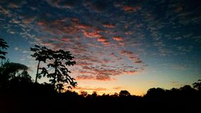 Sunset at the farm, Brazil stock images