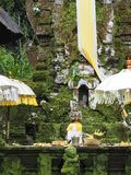 Altar and offerings at the entrance of an ancient temple invaded by moss in Bali, Indonesia stock photography
