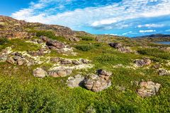 Hillside, green grass, stones, blue sky. Photo taken in a trip to the Arctic Ocean, near the village Teriberka Stock Photography