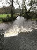 View of the creek in the grounds of the Blarney Castle in. Photo taken in 2017 Stock Photos