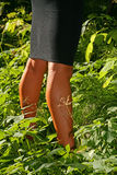 Photo tanned legs girl in black skirt semi-covered in green vegetation. Photo tanned legs of a girl or young woman in a black tight skirt, half hidden in Royalty Free Stock Photo