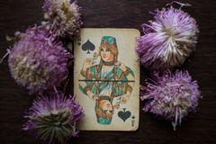 Photo of tarot card. Photo cards for fortune telling or playing. Old cards on a wooden background with flowers Royalty Free Stock Photos