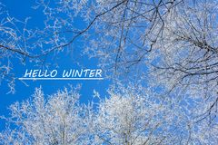Photo with text Hello winter. Winter landscape. Banner with text. Hello winter. Winter. royalty free stock photography