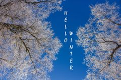 Photo with text Hello winter. Winter landscape. Banner with text. Hello winter. Winter. stock photo