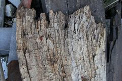Photo texture of old aged wooden plank royalty free stock photos