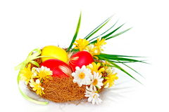 Photo on the theme of Easter. Easter nest with eggs and daisies Stock Images