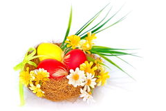 Photo on the theme of Easter. Easter nest with eggs and daisies Royalty Free Stock Photo