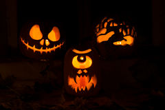 Photo of three pumpkins for Halloween. Stock Images