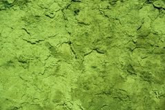 Photo of the toxic green colored rough weathered stucco wall texture. Best for background stock photos