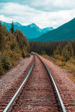 Photo of Train Railroad Surrounded by Trees Royalty Free Stock Image