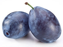 Photo of two plums. Royalty Free Stock Photos