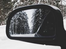Photo of Vehicle Wing Mirror With Tree As Reflection Stock Photos