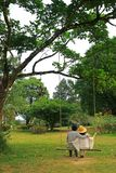 Photo verticale d'un couple se reposant côte à côte sur une oscillation en bois dans le jardin photo libre de droits