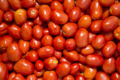 Photo of very fresh tomatoes. Royalty Free Stock Images