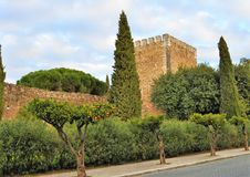 The castle surrounded by green grove royalty free stock image