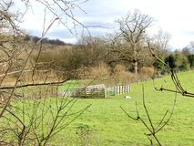 Wooden cattle paddock, Chorleywood House Estate stock photo