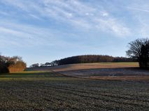 View across field to Scrubbs Wood, Sarratt from the Chess Valley stock photos