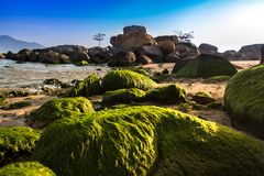 Nature Seascape with Rough Stacked Rocks and Boulders at Hon Chong Promontory in The Morning Sunshine royalty free stock images
