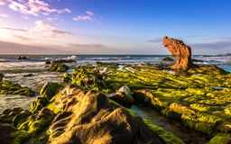 Nature Seascape with Boulder, Green Mosses Covered Rocks and Clouds in The Sunshine royalty free stock photos