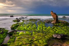 Nature Seascape with Exotic Boulder and Green Moss Covered Rocks at Dawn royalty free stock image