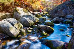 The rivulet and rocks in autumn. The photo was taken in Yanghu gully of Benxi city Liaoning province, China. Benxi city is a capital of maple leaves in aun stock photo
