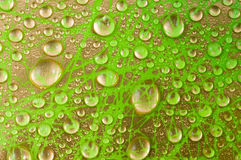 Photo of Water Drops Royalty Free Stock Photos