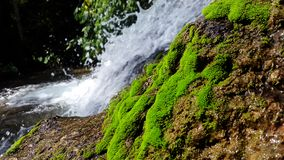 Photo of Waterfalls royalty free stock images