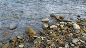 Wet river stones in the water. Riverbank. royalty free stock images