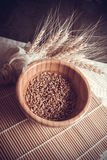 Photo of wheat bundle and sprouts on dark background. Wheat harvest, photo with copy space Stock Photos
