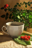 Photo of white coffee cup with raspberry on green leaves on beige and plant background. White coffee cup with raspberry on green leaves on beige and plant Royalty Free Stock Images