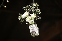 Photo of White Flowesr on Clear Glass Bottle Stock Photos