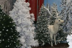 White reindeer of Santa Claus on Christmas tree Stock Images