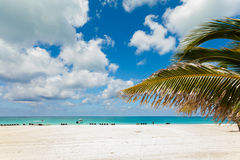 Photo of white sand beach. Royalty Free Stock Images