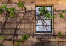 Window in sand stone wall royalty free stock images