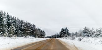 Photo of winter road with trees in snow. By day Stock Photos