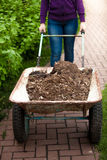 Photo of woman holding wheelbarrow with soil Stock Image