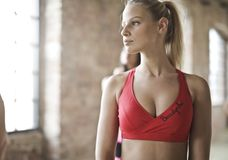 Photo of Woman in Red Sports Bra Royalty Free Stock Photo