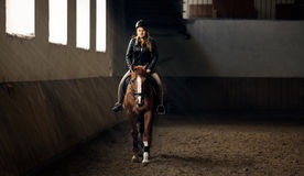 Photo of woman riding horse on manege in riding hall Royalty Free Stock Photos